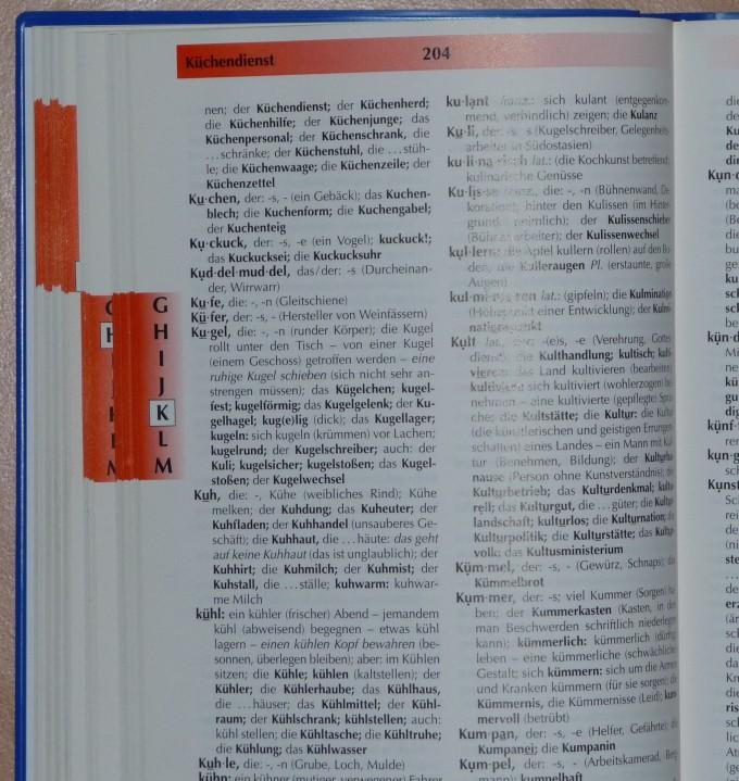 Arbeit mit dem Wörterbuch | S.Ng – Nordlicht